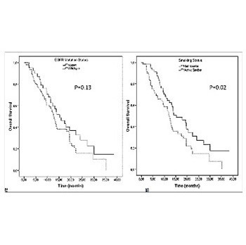 Impact of active smoking on survival of patients with metastatic lung adenocarcinoma harboring an epidermal growth factor receptor (EGFR) mutation