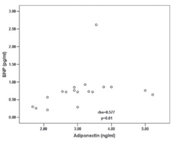 B-type natriuretic peptide and adiponectin releases in rat model of myocardial damage induced by isoproterenol administration