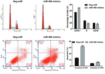 MicroRNA-466 (miR-466) functions as a tumor suppressor and prognostic factor in colorectal cancer (CRC)