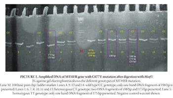 Methylenetetrahy-drofolate Reductase Gene Polymorphism in Patients Receiving Hemodialysis