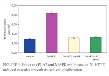 Endothelin-1 Induced Vascular Smooth Muscle Cell Proliferation is Mediated by Cytochrome P-450 Arachidonic Acid Metabolites