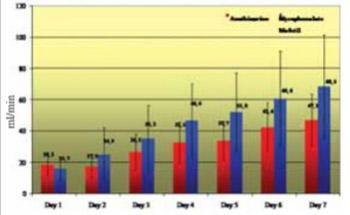 Micophenolat Mofetil Versus Azathioprine: Effects on Renal Graft Function in Early Posttransplant Period