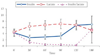 Effect of Lactate on Insulin Action in Rats
