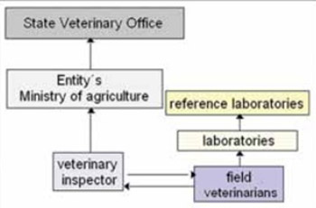 Brucellosis of Ruminants in Bosnia and Herzegovina: Disease Status, Past Experiences and Initiation of a New Surveillance Strategy