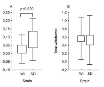 Hyperalgesia-Type Response Reveals No Difference in Pain-Related Behavior Between Wistar and Sprague-Dawley Rats