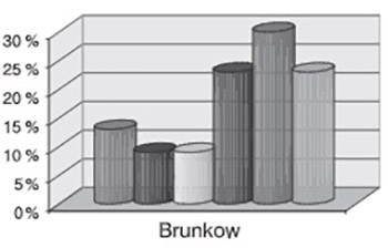 Brunkow exercises and low back pain