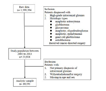 Characteristics and prognostic factors of age-stratified high-grade intracranial glioma patients: A population-based analysis
