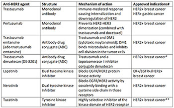 Targeting HER2 expression in cancer: New drugs and new indications