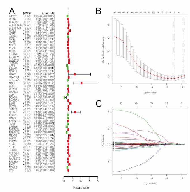 Six RNA binding proteins (RBPs) related prognostic model predicts overall survival for clear cell renal cell carcinoma and it is associated with immune infiltration