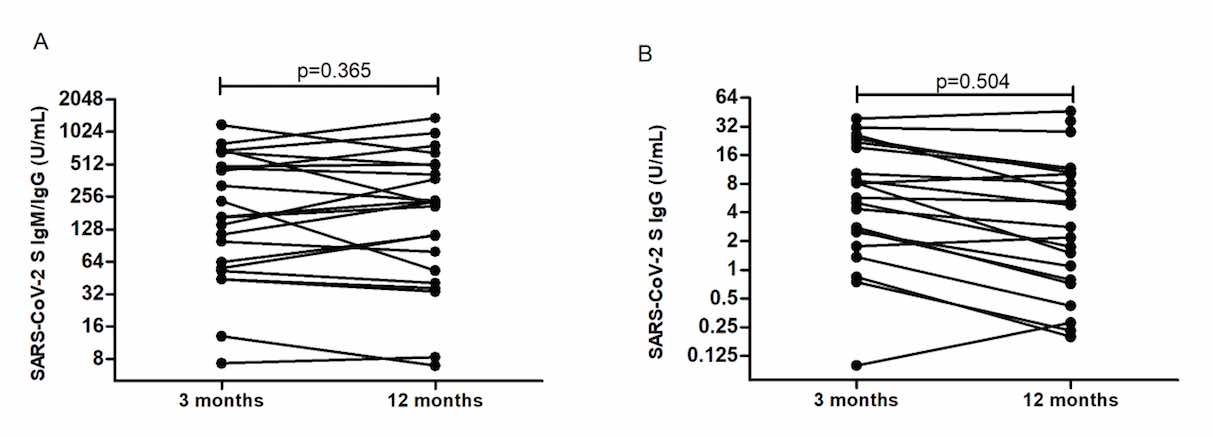 Sustained seroprevalence of SARS-CoV-2 antibodies one year after infection: one of the first COVID-19 cluster cases in Bosnia and Herzegovina