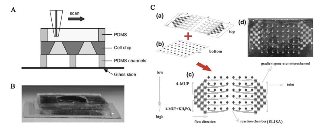 Application of microfluidic chips in anticancer drug screening